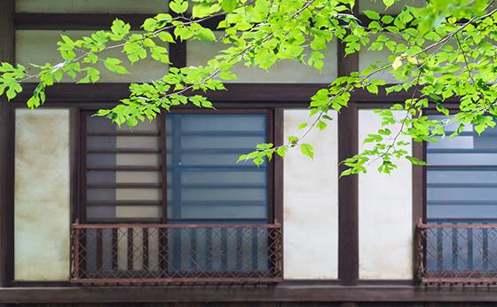 網戸つき窓イメージ